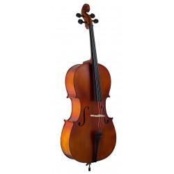 Violonchelo Amadeus Tapa...