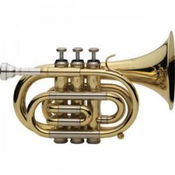 Trompeta J. Michael Tr350...