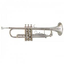 Trompeta  Amadeus Niquelada...