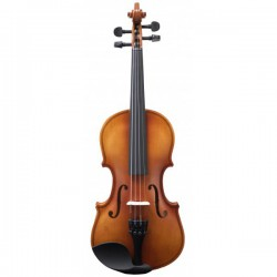 Violín Amadeus Va-101...